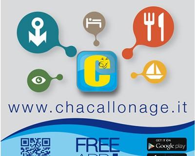 chacall_vetrofania